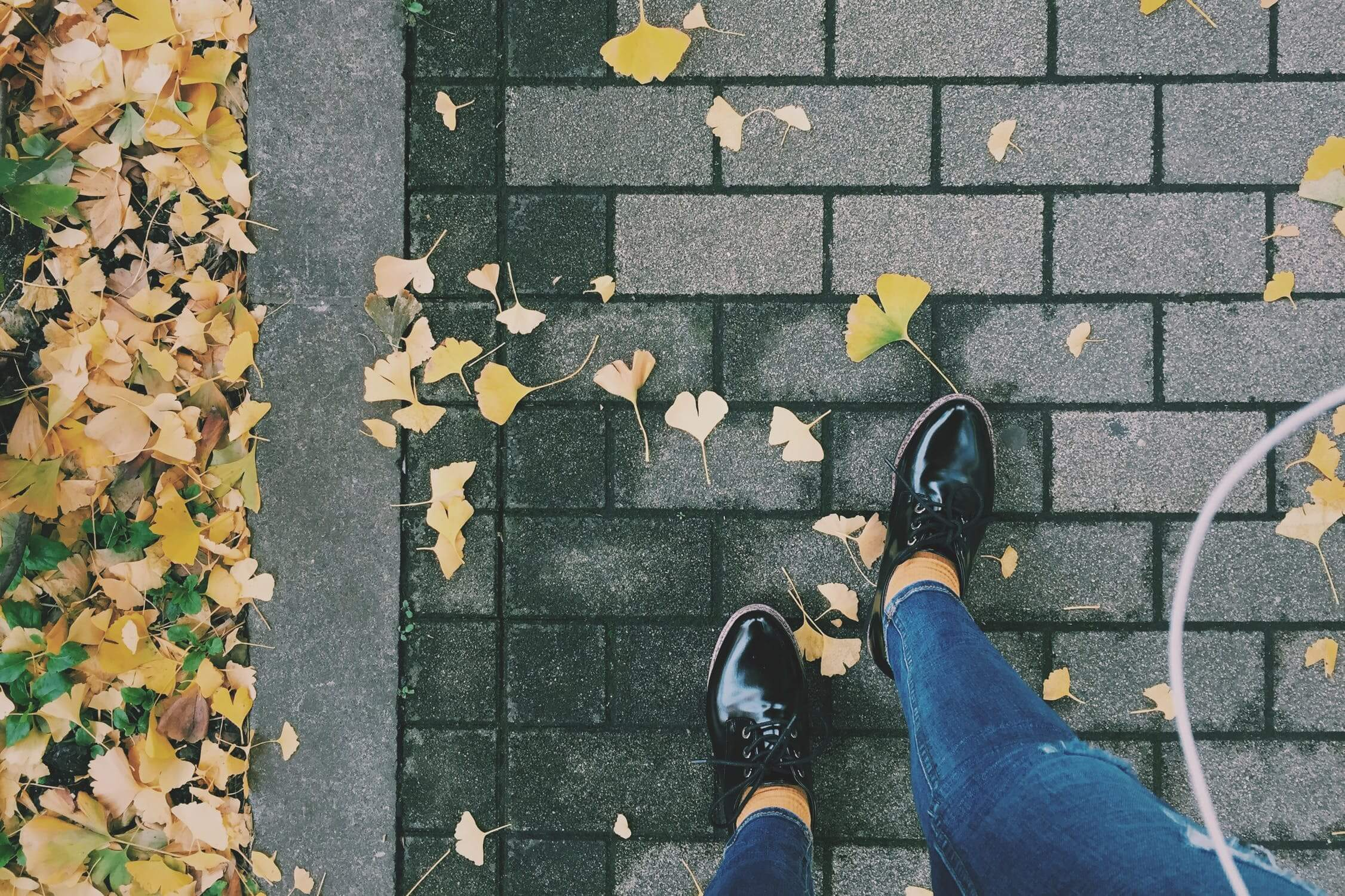 A pair of feet stand on concrete bricks, with fallen leaves scattered around.